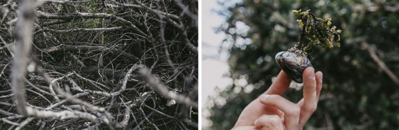 Wedding+Photographer+San+Francisco-11a