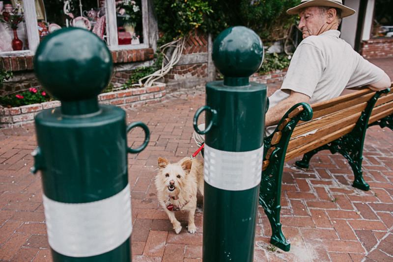 Wedding+Photographer+San+Francisco-39